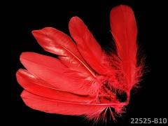 ČERVENÉ peří husí letky brka dekorační pírka