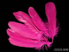 RŮŽOVÉ CYKLÁM peří husí letky brka dekorační pírka