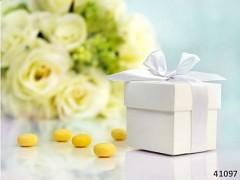 BÍLÁ Dárková krabička s mašličkou na svatební mandle