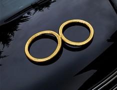 ZLATÉ PRSTÝNKY svatební dekorace na auto, dveře aj.