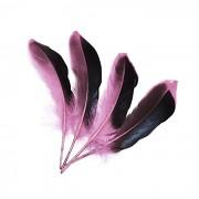 RŮŽOVÉ /ČERNÉ peří husí letky brka dekorační pírka růžovočerné