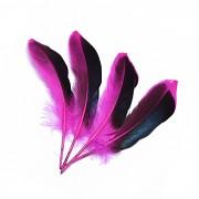 RŮŽOVÉ CYKLÁM /ČERNÉ peří husí letky brka dekorační pírka růžovočerné