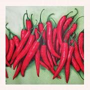 Ubrousky s chilli papričkama, 1ks