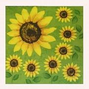 Slunečnice zelené ubrousky se slunečnicemi, 1ks